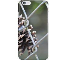 Pine Cone in Fence iPhone Case/Skin