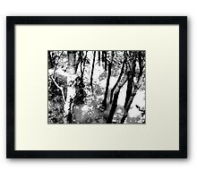 Gloom trees Framed Print