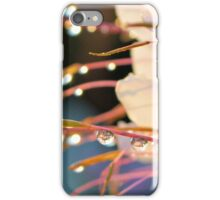 Showy Spider Flower iPhone Case/Skin