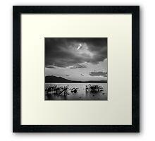 Mountain Lake Reeds III Framed Print
