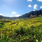 Makua Valley Road by kevin smith  skystudiohawaii