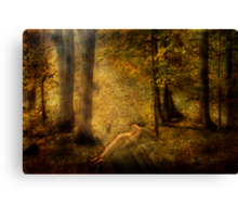 In My Haven Canvas Print