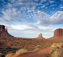 Monument Valley, Arizona by Carol M.  Highsmith