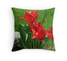 Fancy Miniature Tulips Throw Pillow