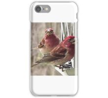 House Finches iPhone Case/Skin