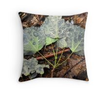 Leaves with raindrops Throw Pillow