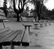 Rainy day benches by Denise Couturier