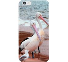 Pelican 5 iPhone Case/Skin