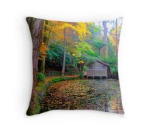 All the colours of the rainbow at Alfred Nicholas Gardens Throw Pillow