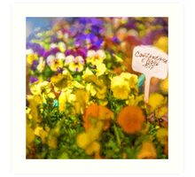 Contenitore e Fiori (Container of Flowers) [Gary Guthrie] Art Print
