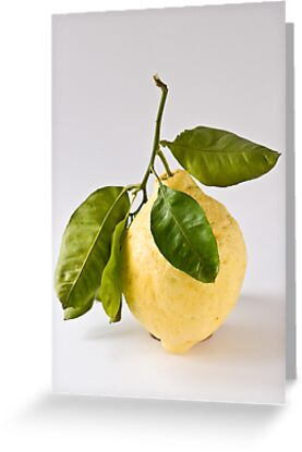 Citron/Cedro by Ilva Beretta