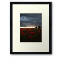 Sunset with Poppies Framed Print
