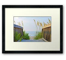 Obvious Path Framed Print