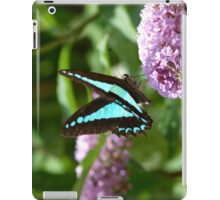 Blue Triangle, Graphium sarpedon iPad Case/Skin