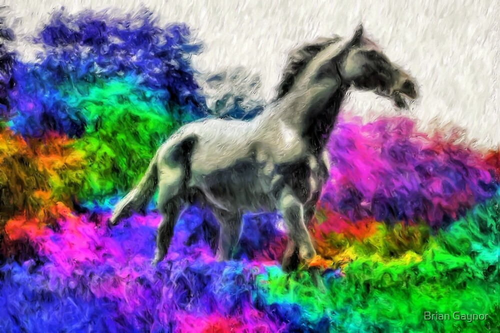 Spirit of the Horse by Brian Gaynor