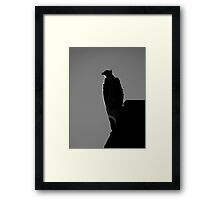 Bird's View ~ Part Two Framed Print