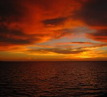 From The Charlotte Harbor Punta Gorda Florida by enyaw