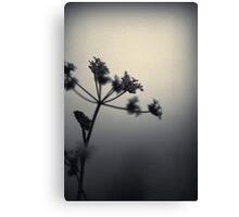 desolate. Canvas Print