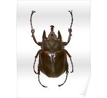 Bug 01 Poster