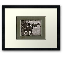 Saddle & Horse Framed Print