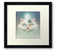The Odd Kitty Framed Print