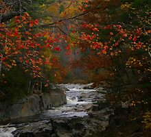 Fall in Coos Canyon by Judith Hayes