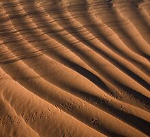 Desert Tracks #2 by Dick Paige