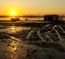 Low Tide by ccaetano