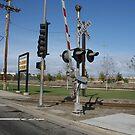 Train Crossing, Long Beach, CA by gailrush