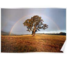After the Rain, Dunkeld, Australia Poster