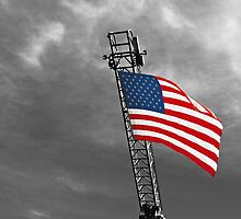'Tis the star-spangled banner! Oh long may it wave!  O'er the land of the free and the home of the brave! by Buckwhite