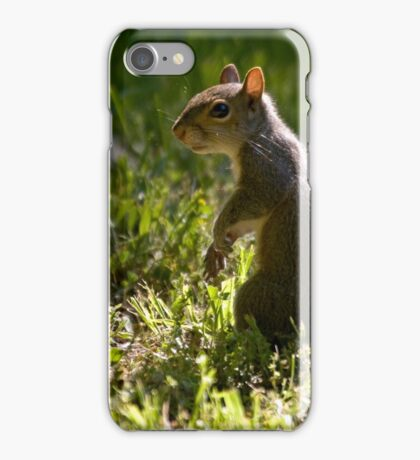 Learning Who's Who iPhone Case/Skin