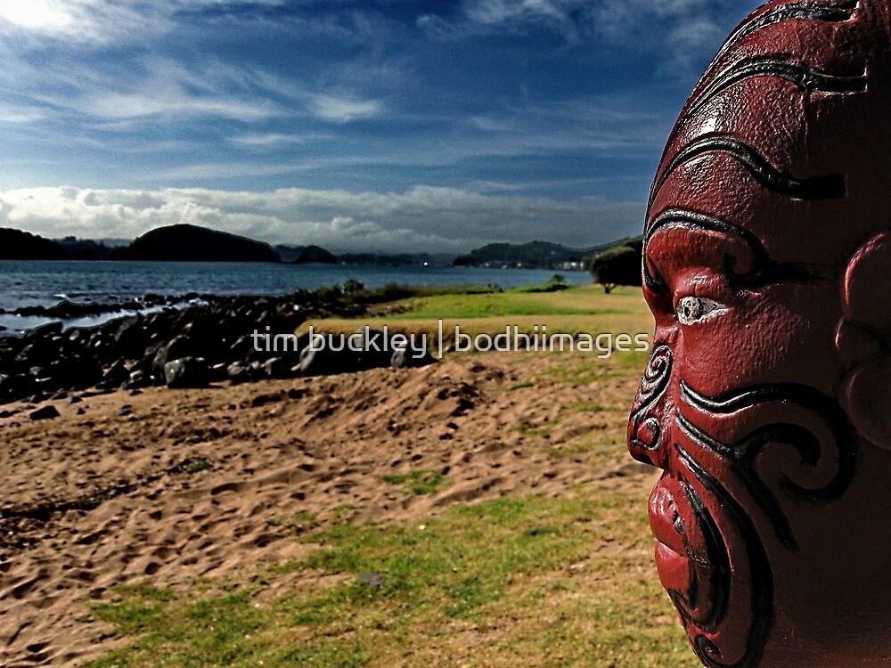 ngatokimatawhaorua. waitangi, aotearoa by tim buckley   bodhiimages