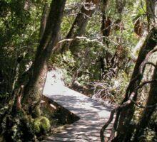 Pathway to Wonder, Dove Lake, Cradle Mountain, Tasmania, Australia.  Sticker