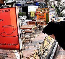 cow espresso. himachal pradesh, india by tim buckley | bodhiimages