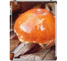 After the Rain, Tumut, Australia. iPad Case/Skin