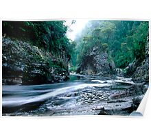 Rock Island Bend, Franklin River, Tasmania Poster