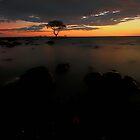 orange sky by jason owens