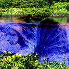 Fairy of the Lake. by Paul Rees-Jones