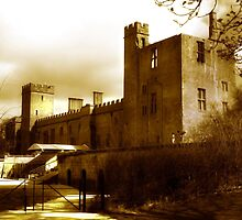 Sudeley Castle - Gloucestershire United Kingdom by dspics
