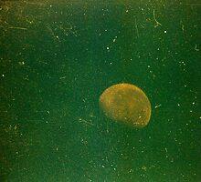 grungy little green moon by Juilee  Pryor