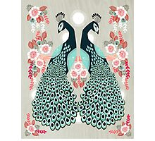 Peacocks by Andrea Lauren  Photographic Print