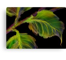 'Burnished Leaves' Canvas Print