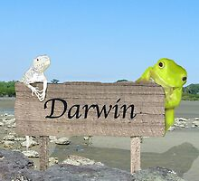 Darwin by Brinjen