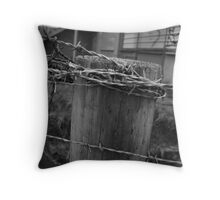 Restricted Area Throw Pillow