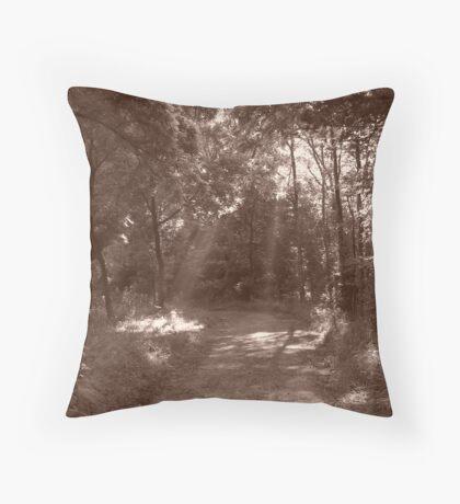rays Throw Pillow