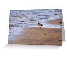 Beach Comber Greeting Card