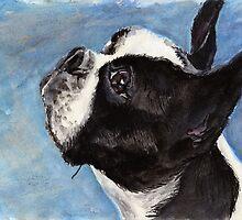 Boston Terrier II by Scott Gardner