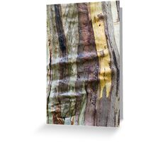 Coloured scribble Greeting Card