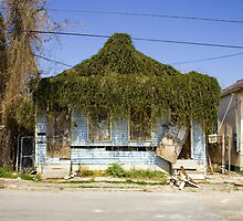 New Orleans after Hurricane Katrina by Carol M.  Highsmith